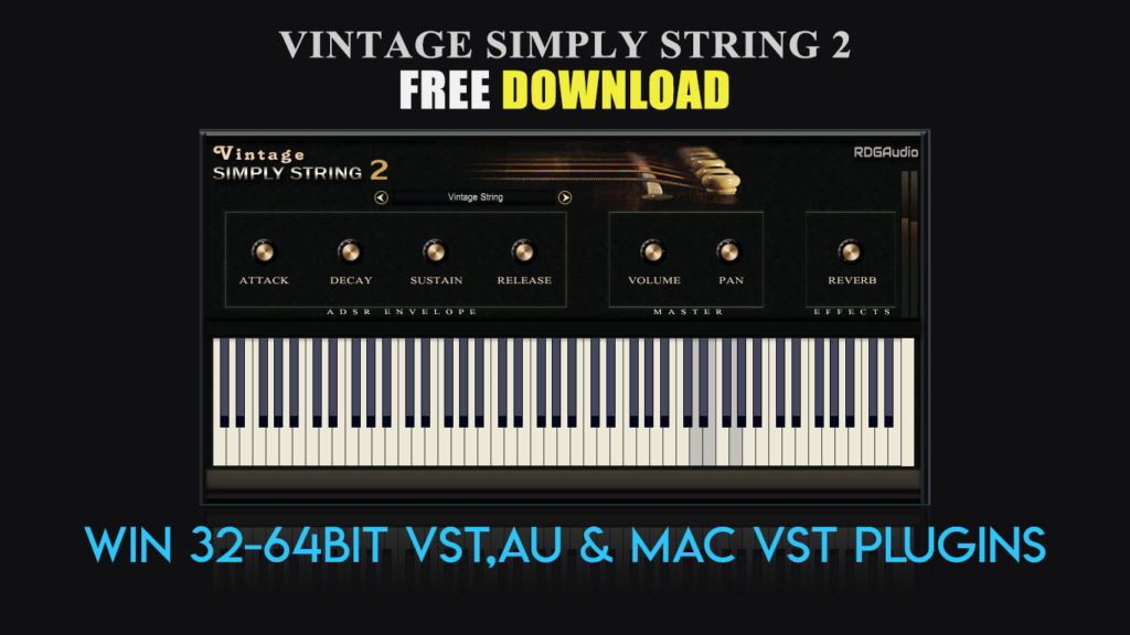 Vintage Simply String 2 RDGAudio Free Download