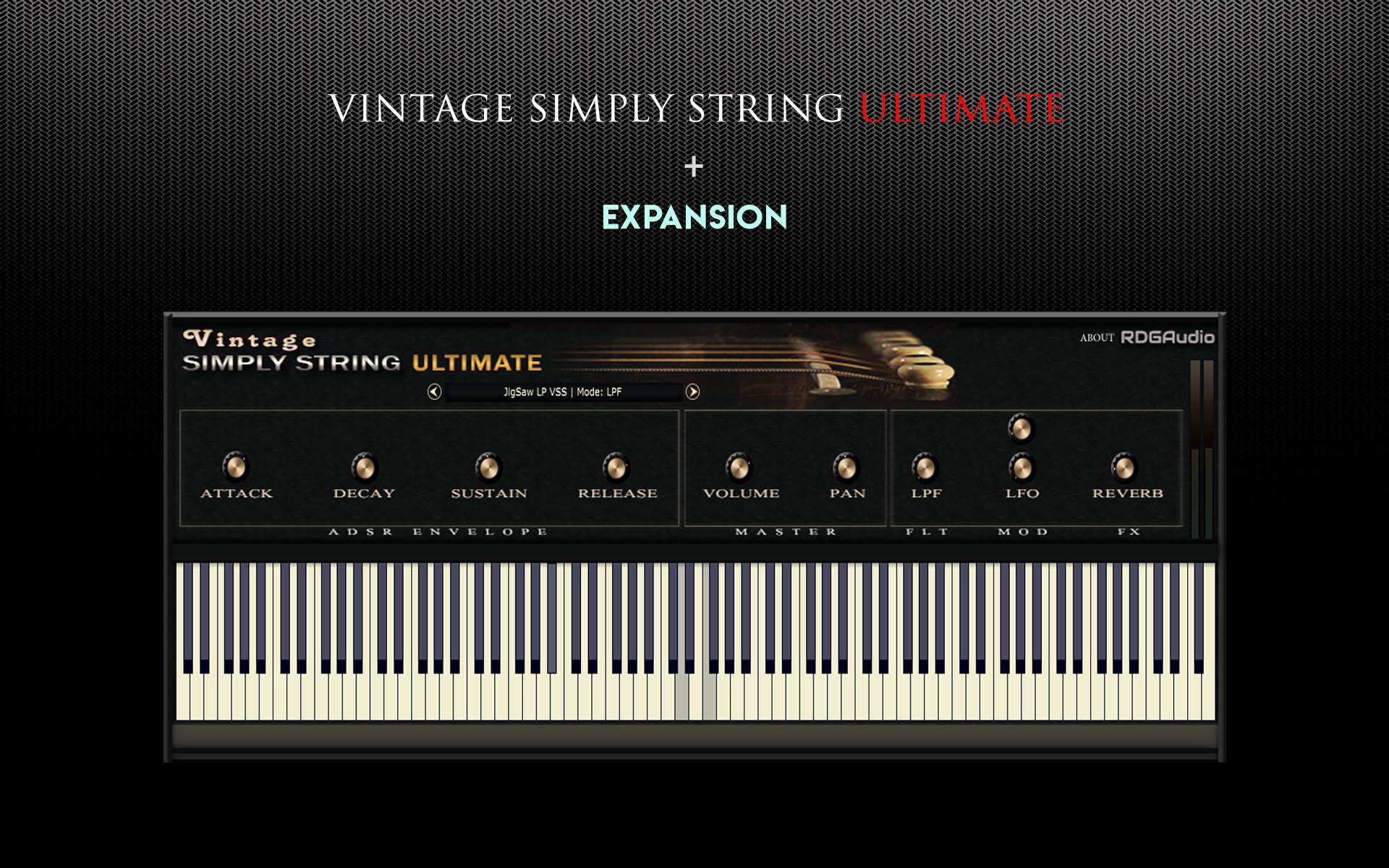 Vintage Simply String Ultimate RDGAudio Slide HD